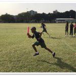 Tree tops Windmill sport